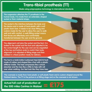 Trans-tibial prothesis
